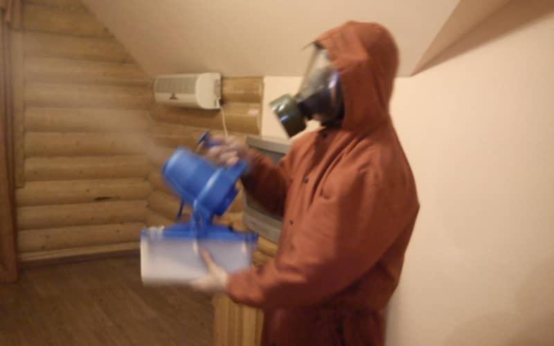 Обработка квартиры от тараканов, технология дезинсекции